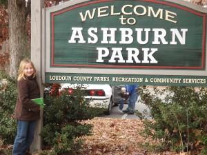 Ashburn Park - Dino Park